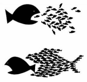 La Coopérative intégrale, une transition «hors du capitalisme»